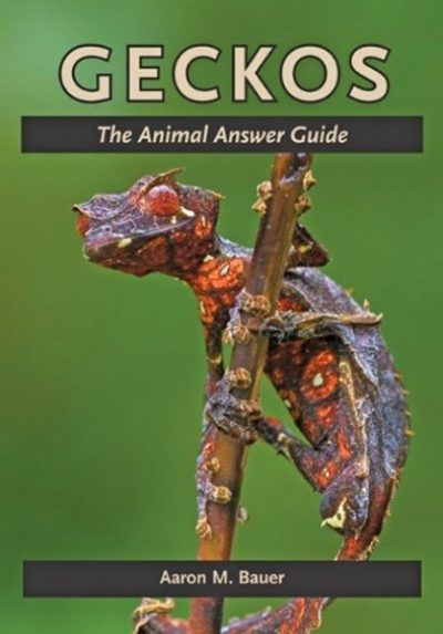 Geckos – The Animal Answer Guide