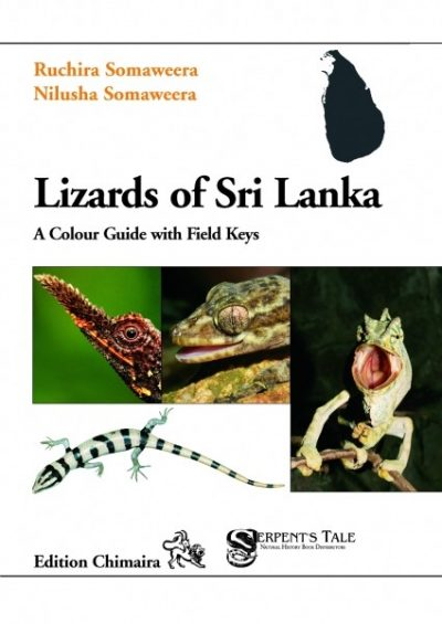 Lizards of Sri Lanka – A Colour Guide with Field Keys