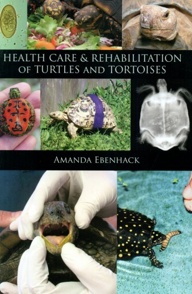 Health Care & Rehabilitation of Turtles and Tortoises