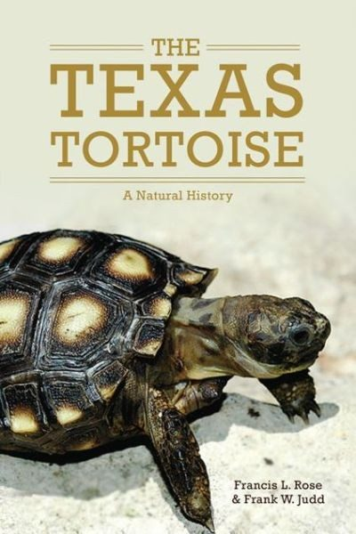 The Texas Tortoise