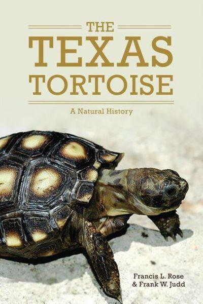 The Texas Tortoise