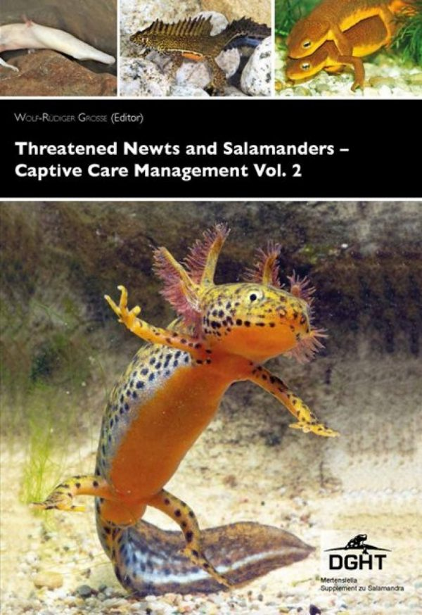 Threatened Newts and Salamanders vol 2