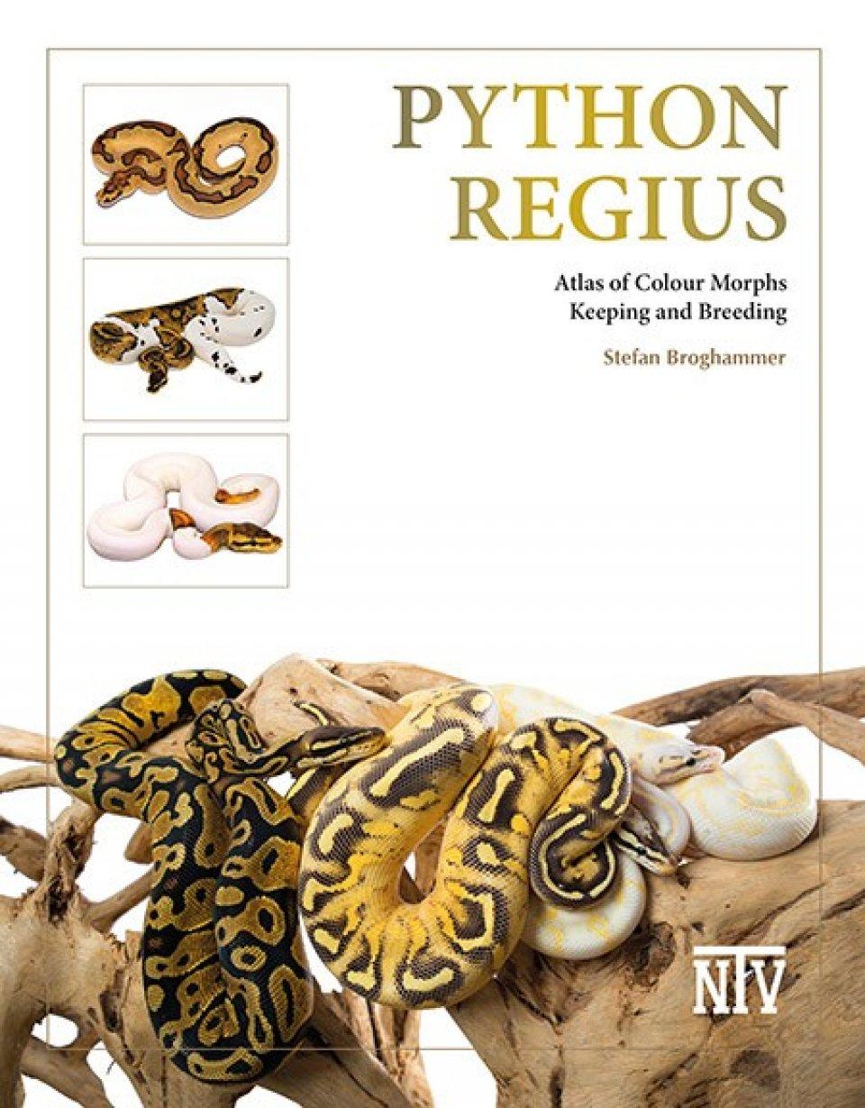 Python regius — Atlas of Colour Morphs