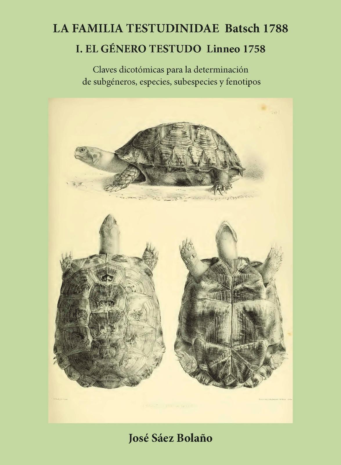 La Familia Testudinidae Batsch 1788. El Género Testudo Linneo 1758. Claves dicotómicas para la determinación de subgéneros, especies, subespecies y fenotipos